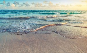 Looking towards the ocean at sunrise